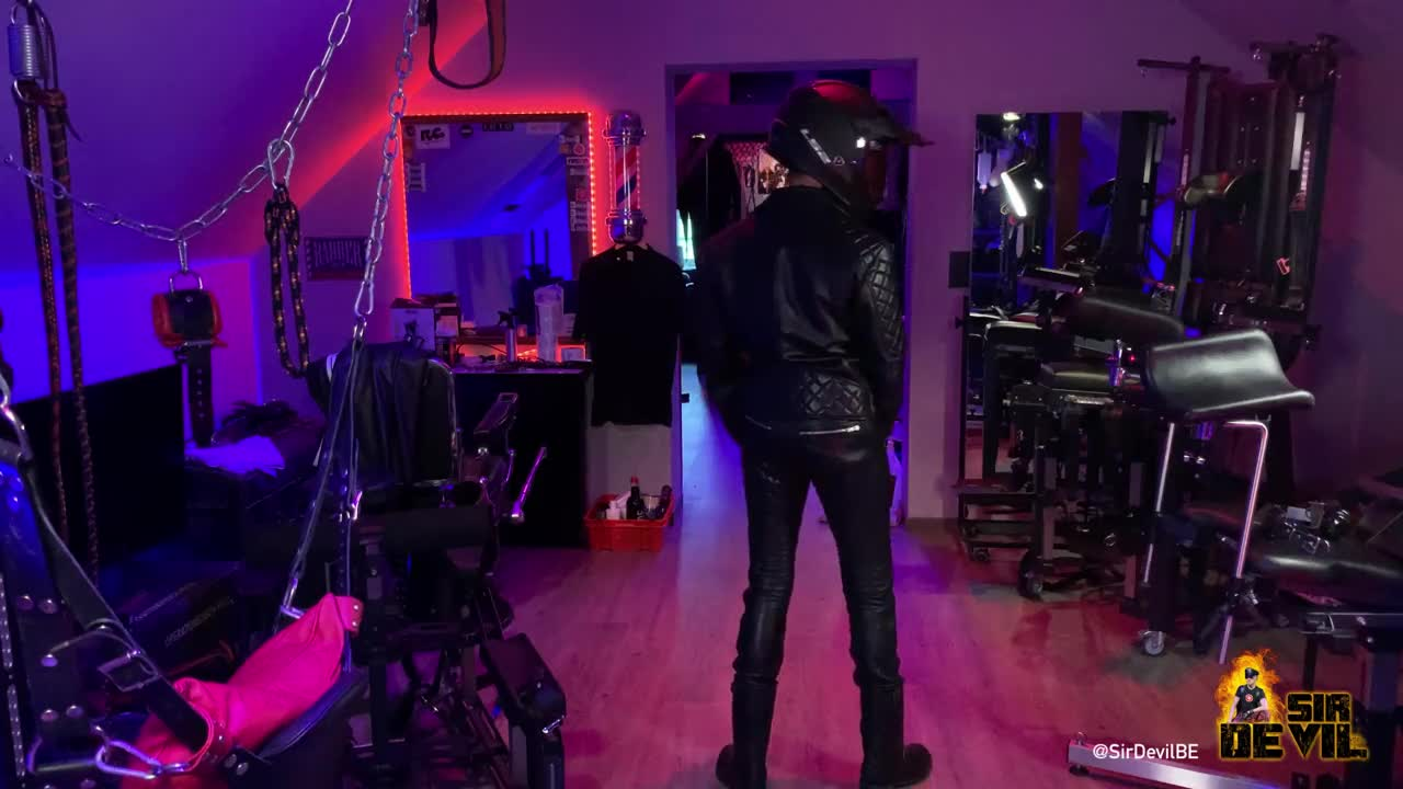 Sir Devil enjoying his leather…